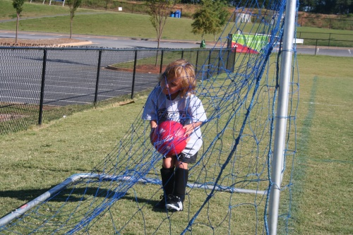 Cole in the net